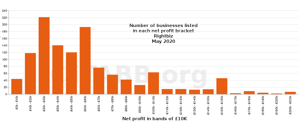 Number of businesses by net profit - rightbiz